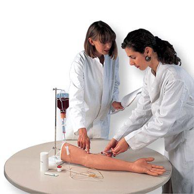 Bras d'injection I.V. P50 1000509 3B Scientific