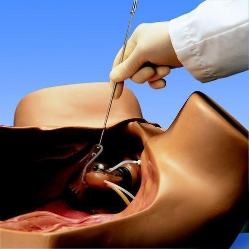 Gynecologic Simulator ZOE W45043
