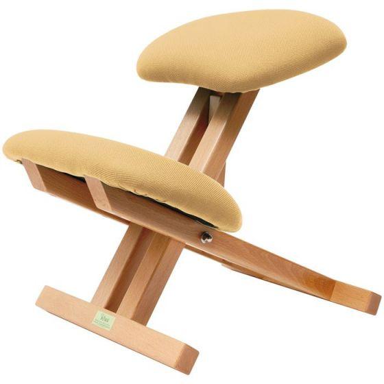 Ecopostural chair Ecopostural S2106