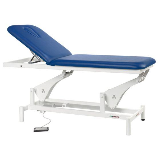Electric Massage Table Ecopostural C3500